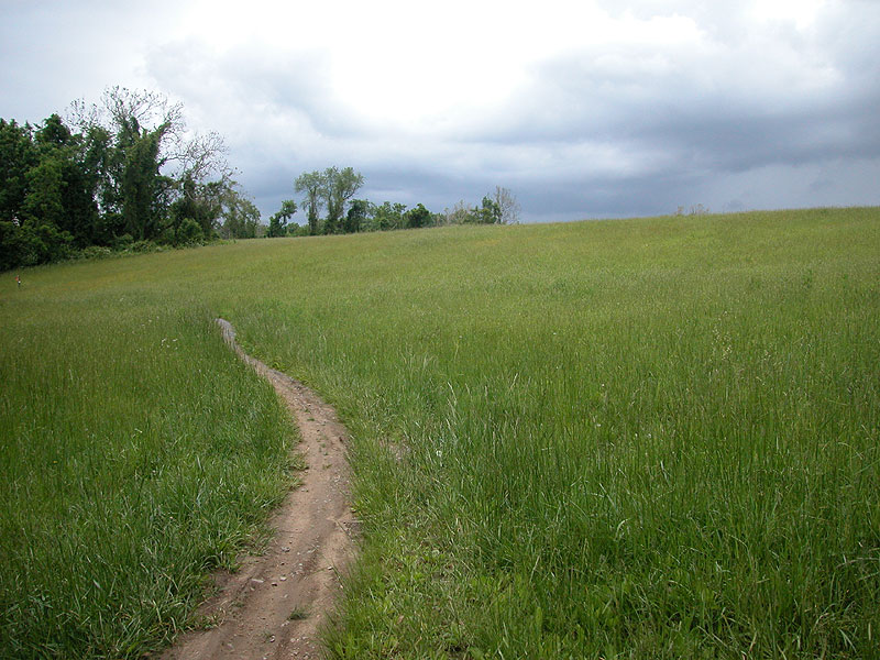 Whitley Farms trail